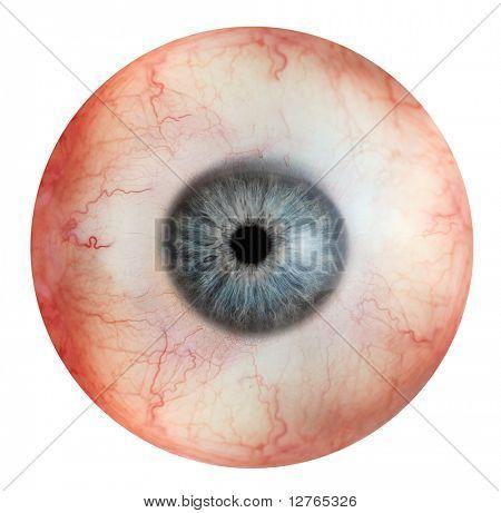 close up view of eyeball