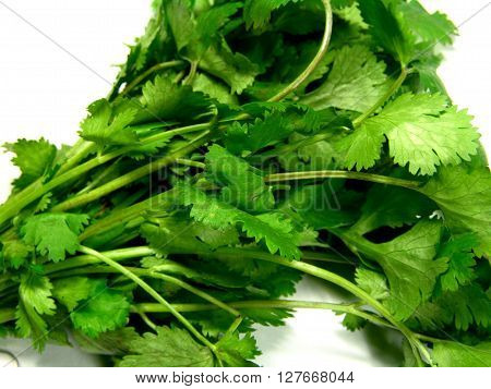served with fresh green chopped parsley sprinkled on top. Root parsley is very common in central, eastern and southern European cuisines, where it is used as a snack or a vegetable in many soups, stews, and casseroles.