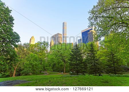 Green Trees And Midtown Manhattan Viewed From Central Park South