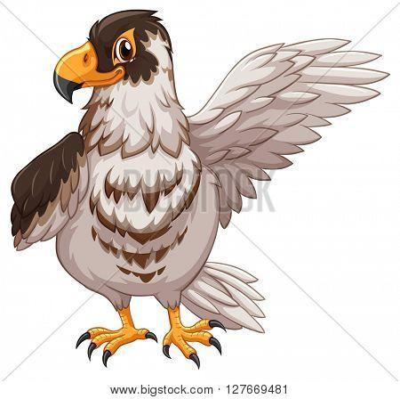 Eagle greeting on white background illustration