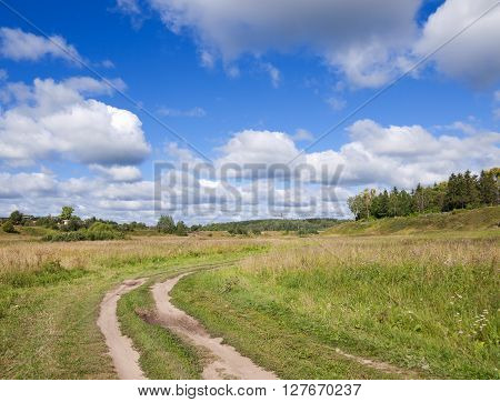 Road in a field in sunny weather in the village. In the sky beautiful white cumulus clouds