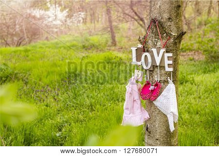Pink baby shoes and dress hanging from a love text on the tree.