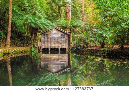 Alfred Nicholas Memorial Gardens Lake In Autumn With Boat Shed.