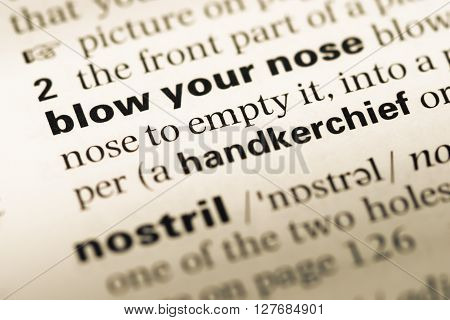 Close Up Of Old English Dictionary Page With Word Blow Your Nose.