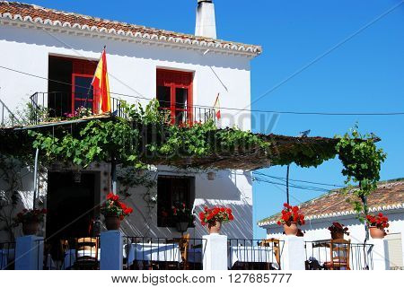 Vine covered restaurant in Constitution Square (Plaza de la Constitucion) Mijas Malaga Province Andalucia Spain Western Europe.