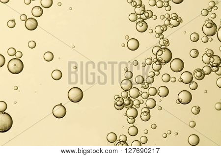 Beautiful golden fizz bubbles in a glass of champagne