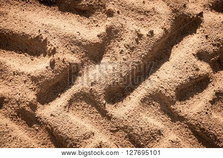 embossed trail excavator tracks on the wet sand