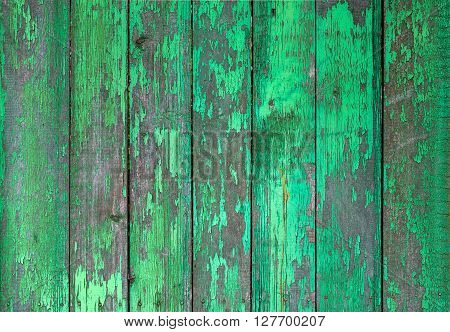 Old wooden painted light green rustic fence paint peeling background ** Note: Visible grain at 100%, best at smaller sizes