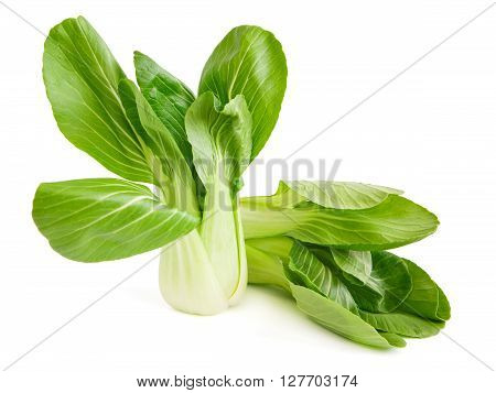 Two choi cabbage isolated on white background