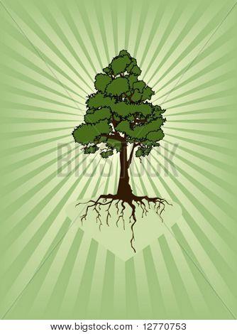 Ein Baum - Vektor