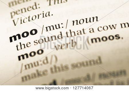Close Up Of Old English Dictionary Page With Word Moo.