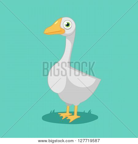 funny cartoon goose , bird farm.Vector Illustration of goose.isolated on white background.