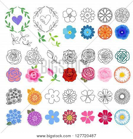Flowers set black outline & colored different styles drawn; isolated on white background (vector illustration)
