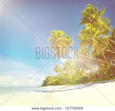 Tropical beach destination.