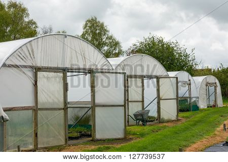 Horticultural polytunnel for growing tender plants  and offering protection from the elements