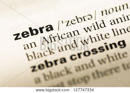 Close Up Of Old English Dictionary Page With Word Zebra.