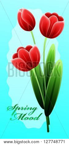 Red Tulips. International Happy Mothers Day With Bunch Of Spring Flowers. Womens Day. Holiday Backgr