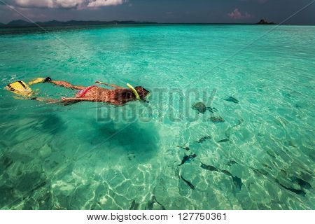 The young lady is swimming with snorkel and fins