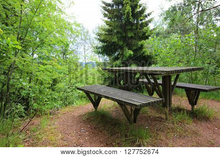 Picnic place in forest at summer time Norway