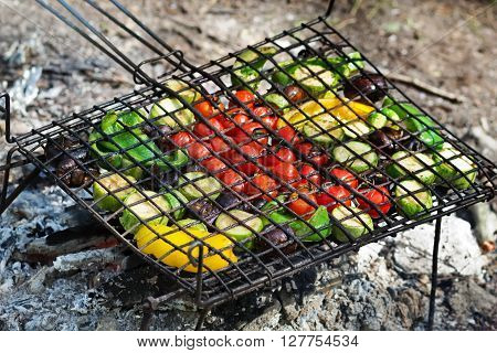 Fresh vegetables for grilling picnic in summer outdoors.