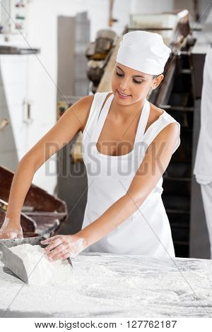 Female Baker Holding Flour Scoop At Table