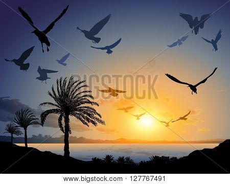 Tropical Sea Landscape With Flock Of Flying Bird