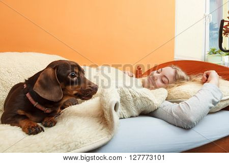 Woman with dog waking up in bed in the morning after sleeping. Young girl laying under wool blanket.
