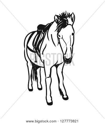 Graphic image of a little horse. A pony with a saddle on his back the bridle - figure abstraction. Vector illustration on a white background.