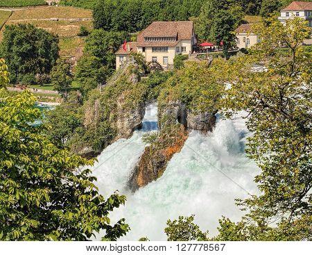 The Rhine Falls in summer. The Rhine Falls (Rheinfall in German) is the largest plain waterfall in Europe located on the Rhine river in Switzerland, between municipalities of Neuhausen am Rheinfall and Laufen-Uhwiesen.