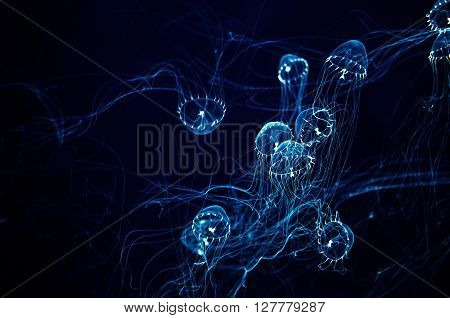 Transparent glow in the dark jellyfish with long tentacles
