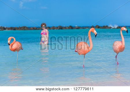 Flamingos on the tropical beach and women on background