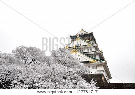 Osaka Castle under Snow with white background Japan