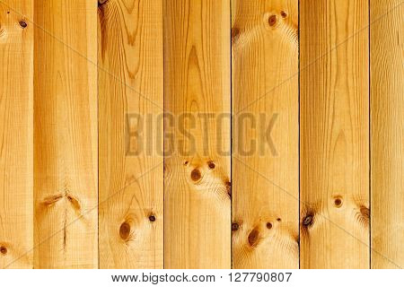 The varnished boards. The wood texture. The background. The vertical plank.