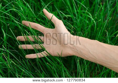 Spring And Relaxation Theme: The Human Hand Touches A Young Fresh Green Grass In The Garden