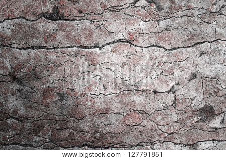 Beautiful grunge stone texture. Old stone macro, can be also used as background.