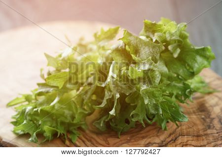 fresh green frillis salad on cutting board, toned photo