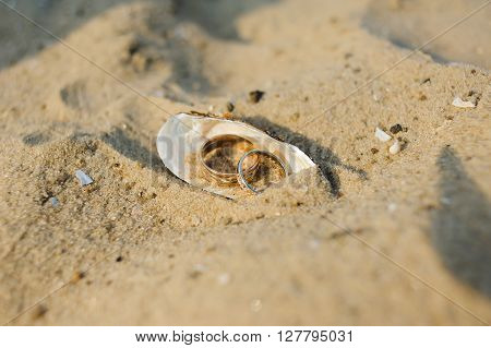 Two wedding rings in a shell. Shell on the sand beach. Wedding ceremony on the beach. Close-up.