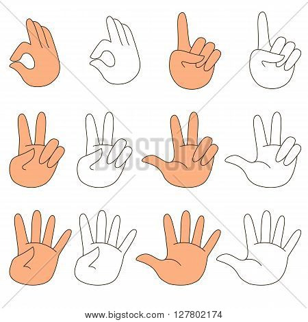 Set of hands with figures. How to illustrate figures from 1 to 5 with fingers. Kid fingers. Learn and fun. Primary math.