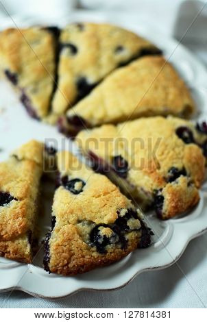 Blueberry scones cut in triangles on white plate