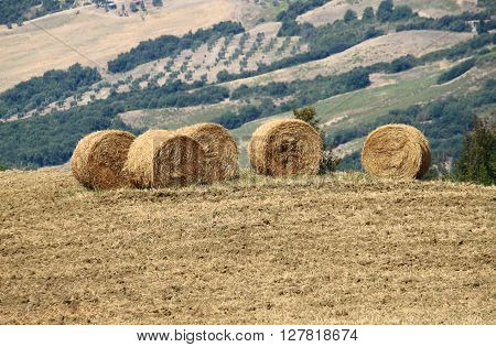 Hay bales in the countryside of Tuscany, Italy