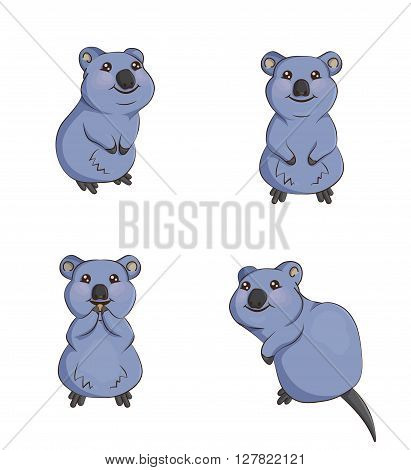 A set of cute cartoon smiling quokka animals in various poses, sitting, eating, front and back. Decorations for parties and design elements.