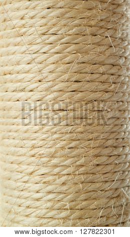 Scratching post for cats as texture white background