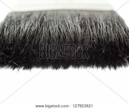 Paint working brush bristle hair over isolated white background
