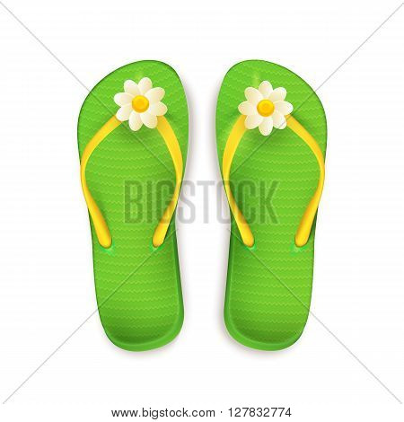 Simple vector illustration of isolated summer slippers.
