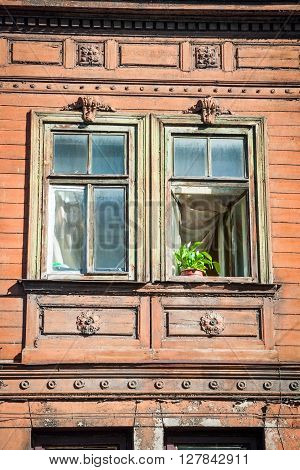 Close-up Of  Window Decorated With Flowers