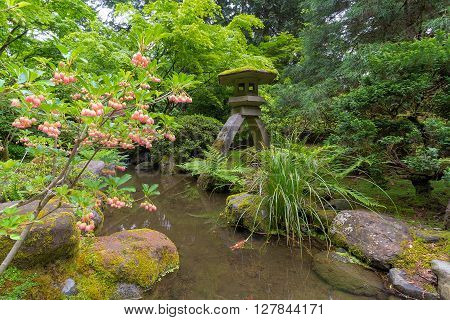 Japanese Snowbell Flowers in Bloom by Creek and Stone Lantern at Japanese Garden in Spring