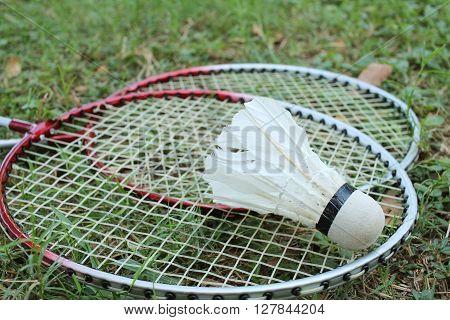 Shuttlecock and badminton racket on green grass.
