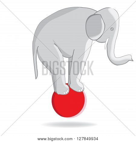 Circus elephant on the ball. The performance of an elephant in the circus. Vector illustration of elephant in circus
