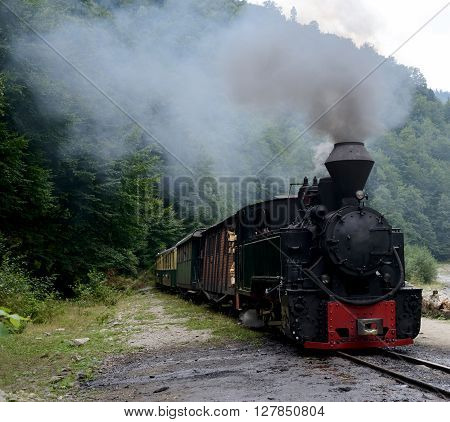 Running wood-burning locomotive against green forest background.