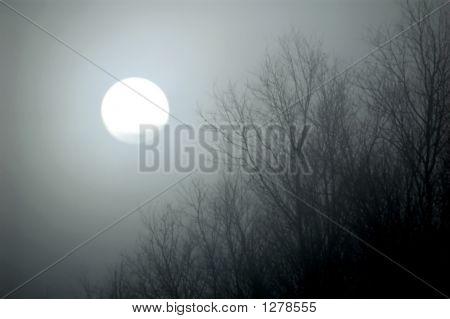 Sun Shining Through Fog